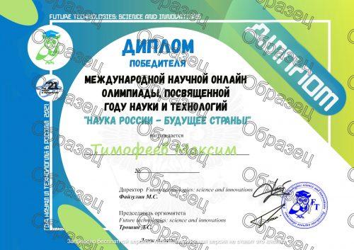 Образец диплома победителя