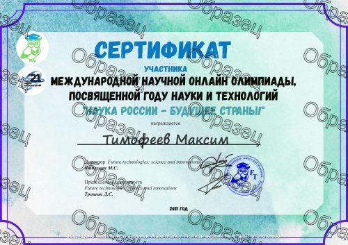 Образец сертификата участника олимпиады (Бесплатно)
